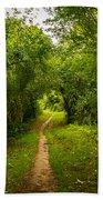 Gosnell Big Woods Trail Bath Towel