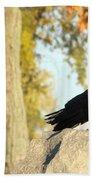 Three Ravens On A Gothic Graveyard Day Bath Towel