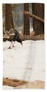 Gould's Wild Turkey Bath Towel