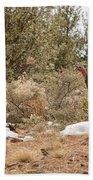 Gould's Wild Turkey Vii Bath Towel