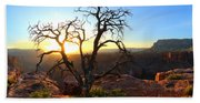 Grand Canyon Gathering The Light Hand Towel