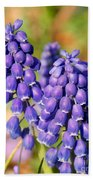Grape Hyacinth Bath Towel