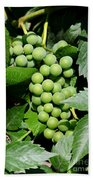 Grapes On The Vine Bath Towel