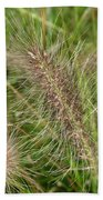 Grasses At Spaulding Pond Bath Towel