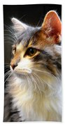 Gray And White Cat Bath Towel