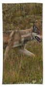 Gray Wolf Hunting Bath Towel