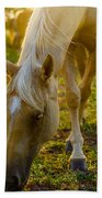 Grazing At Sunset Bath Towel