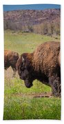 Grazing Bison Bath Towel