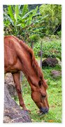 Grazing In Paradise Bath Towel