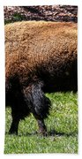 Grazing In The Grass Bath Towel by Robert L Jackson