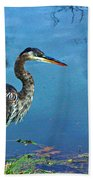 Great Blue Along The Canal Bath Towel