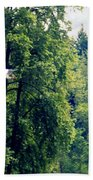 Great Blue Heron Flying Past The Trees Above Trojan Pond 2 Bath Towel