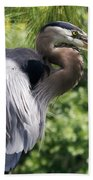 Great Blue Heron Vi Bath Towel