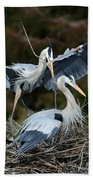 Great Blue Herons Nesting Bath Towel