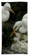 Great Egret Family 2 Bath Towel