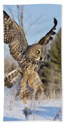 Great Gray Owl Pictures 767 Bath Towel
