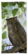 Great Horned Owl On A Branch  Bath Towel
