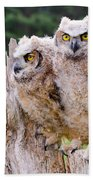 Great Horned Owlets Bath Towel