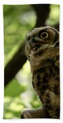 Great Horned Youngster Bath Towel