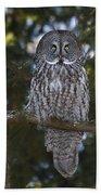 Great Owl Eyes Bath Towel