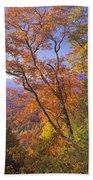 Great Smoky Mts From Blue Ridge Pkwy Bath Towel