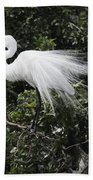 Great White Egret Building A Nest Vii Bath Towel