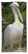 Great White Pelican Bath Towel