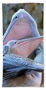 Great White Pelicans Bath Towel
