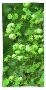 Green Apple On A Branch Hand Towel