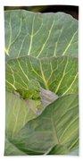 Green Cabbage Bath Towel