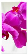 Green Field Sweetheart Orchid No 1 Bath Towel