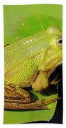 Green Frog 2 Bath Towel