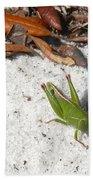 Green Grasshopper Bath Towel