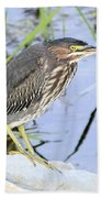 Green Heron 2 Bath Towel