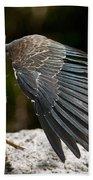 Green Heron Pictures 382 Bath Towel