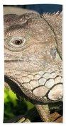 Green Iguana Face Bath Towel
