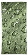 Green Leaf Abstract With Raindrops Bath Towel