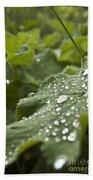Green Leaf And  Fresh Water Pearl Bath Towel