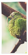 Green Pigeon Bath Towel