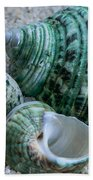 Green Seashells Bath Towel