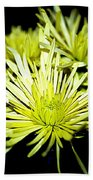 Green Spider Mums Bath Towel