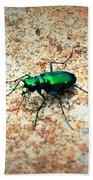 Green Tiger Beetle Bath Towel