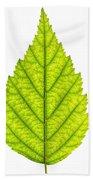 Green Tree Leaf Bath Towel