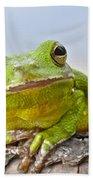 Green Treefrog Bath Towel