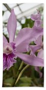 Greenhouse Ruffly Orchids Bath Towel
