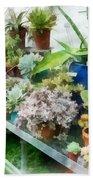 Greenhouse With Cactus Bath Towel