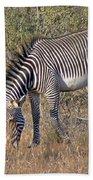 Grevys Zebra Bath Towel