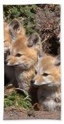Grey Foxes At Den Bath Towel
