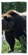 Grizzly-7756 Bath Towel