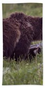 Grizzly Bear  #6192 Bath Towel